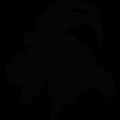 Medium runsquamish logo gray 512x512